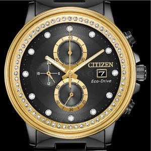 Citizen echo drive black and gold men's watch